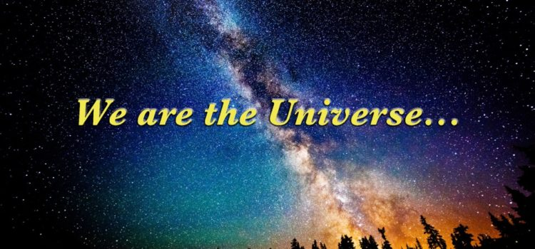 We are the Universe…