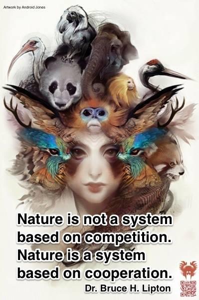 blipton-nature