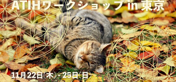 11月のATIHワークショップ in 東京