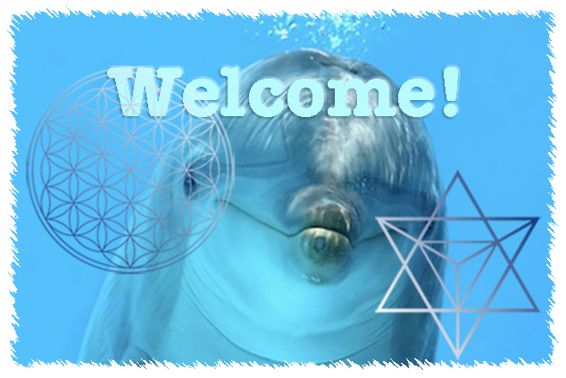 welcome-dolphin