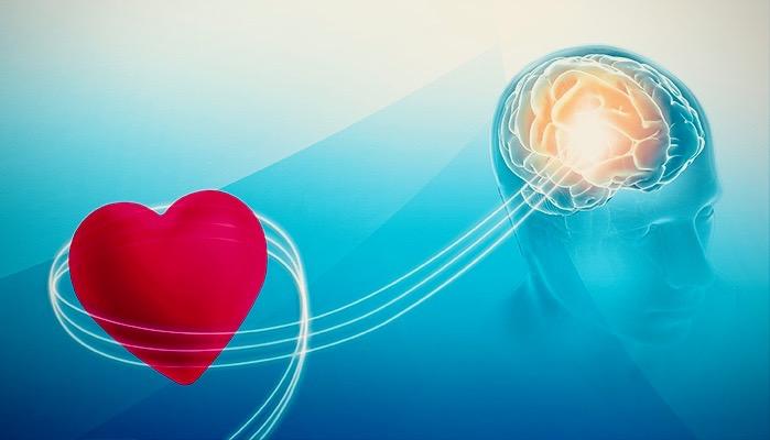 HMI-Blog-Heart-Intelligence