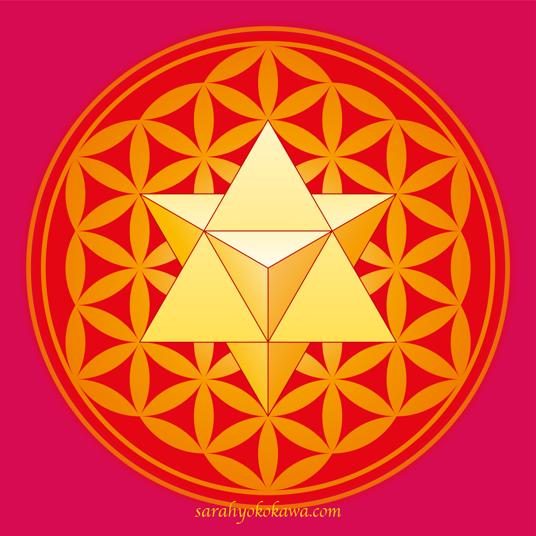 A star tetrahedron also called Merkaba, in the Flower of Life. A double tetrahedron in a geometrical figure, composed of overlapping circles, forming a flower-like pattern. Illustration. Vector.